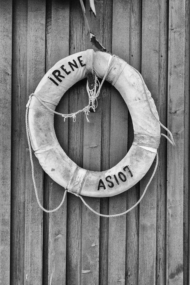 Lifeguard_JOAimgs2013